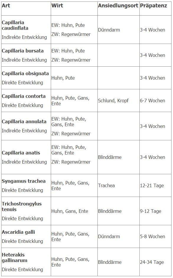 Parasiten - Lachshuhnzucht-Herne