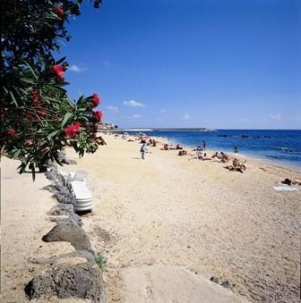 """""""Palmasera"""" Beach"""