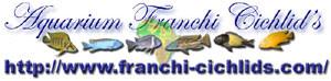 Franchi Cichlids (Calas 13)