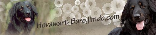 Unser Banner zum verlinken