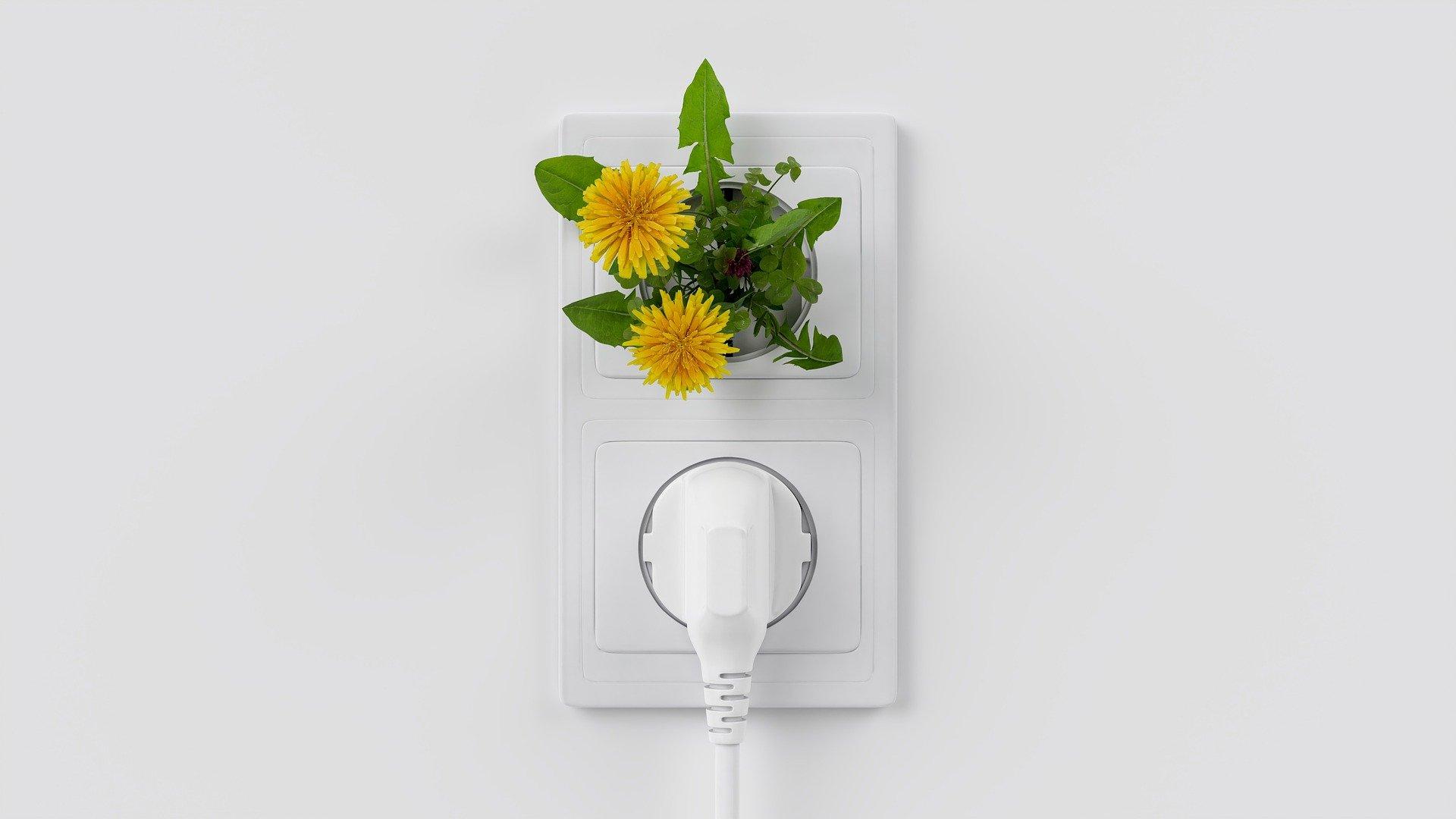 Photovoltaik - Das Bürokratie Problem