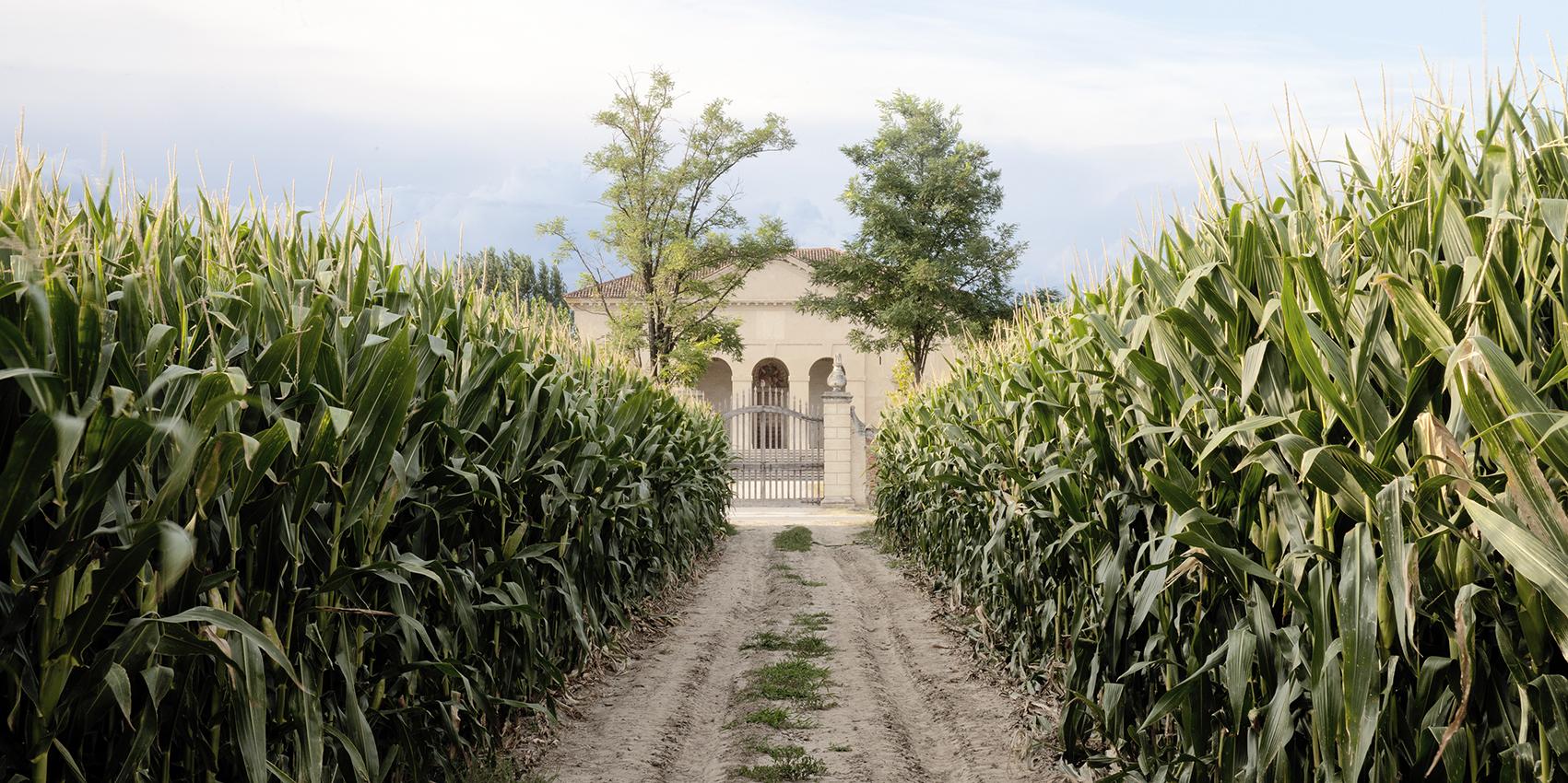 Villa Saraceno.
