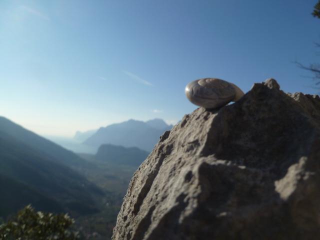 Die Alpinschnecke genießt die Aussicht vom Ausstieg