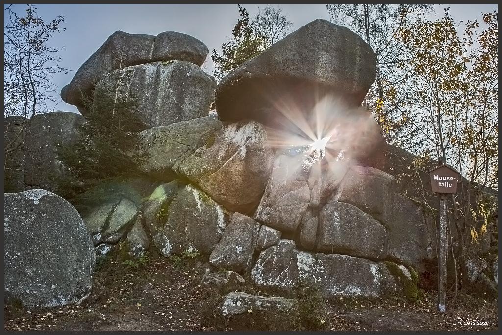 Das Licht/Mausefalle im Harz