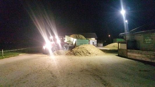 Den Mais bringen wir in die Trocknungsanlage Eschlikon