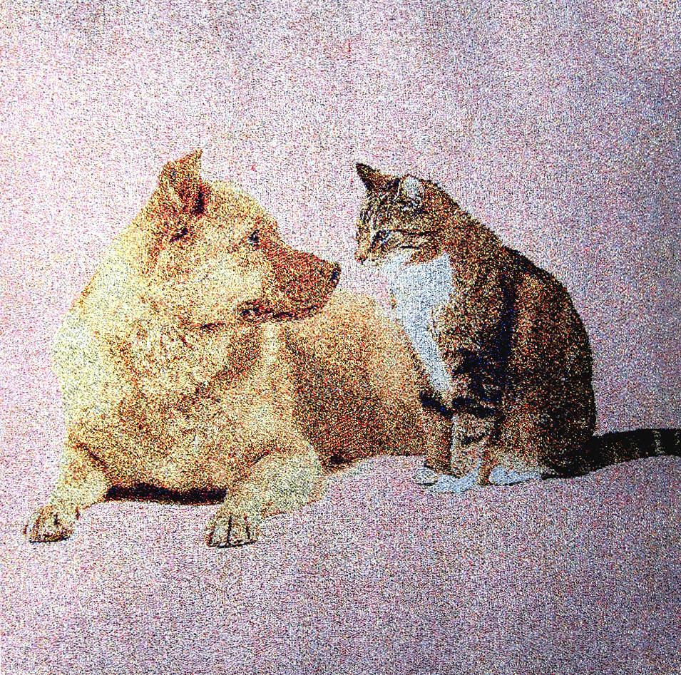 見つめる猫犬  no.M-3   w40*40cm