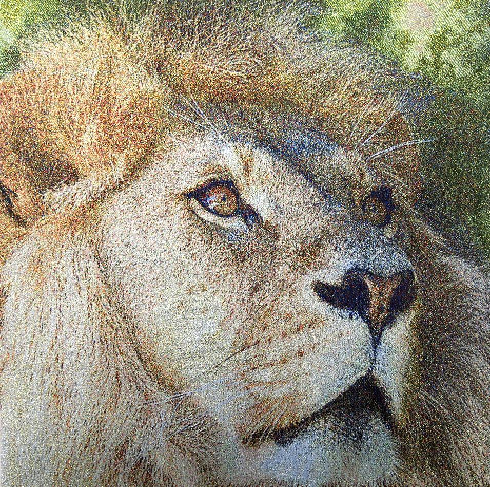 ライオンの迫力 no.R-1  w40*40cm