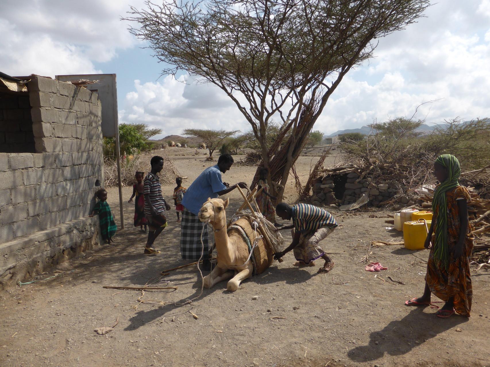 Transport de l'eau potable