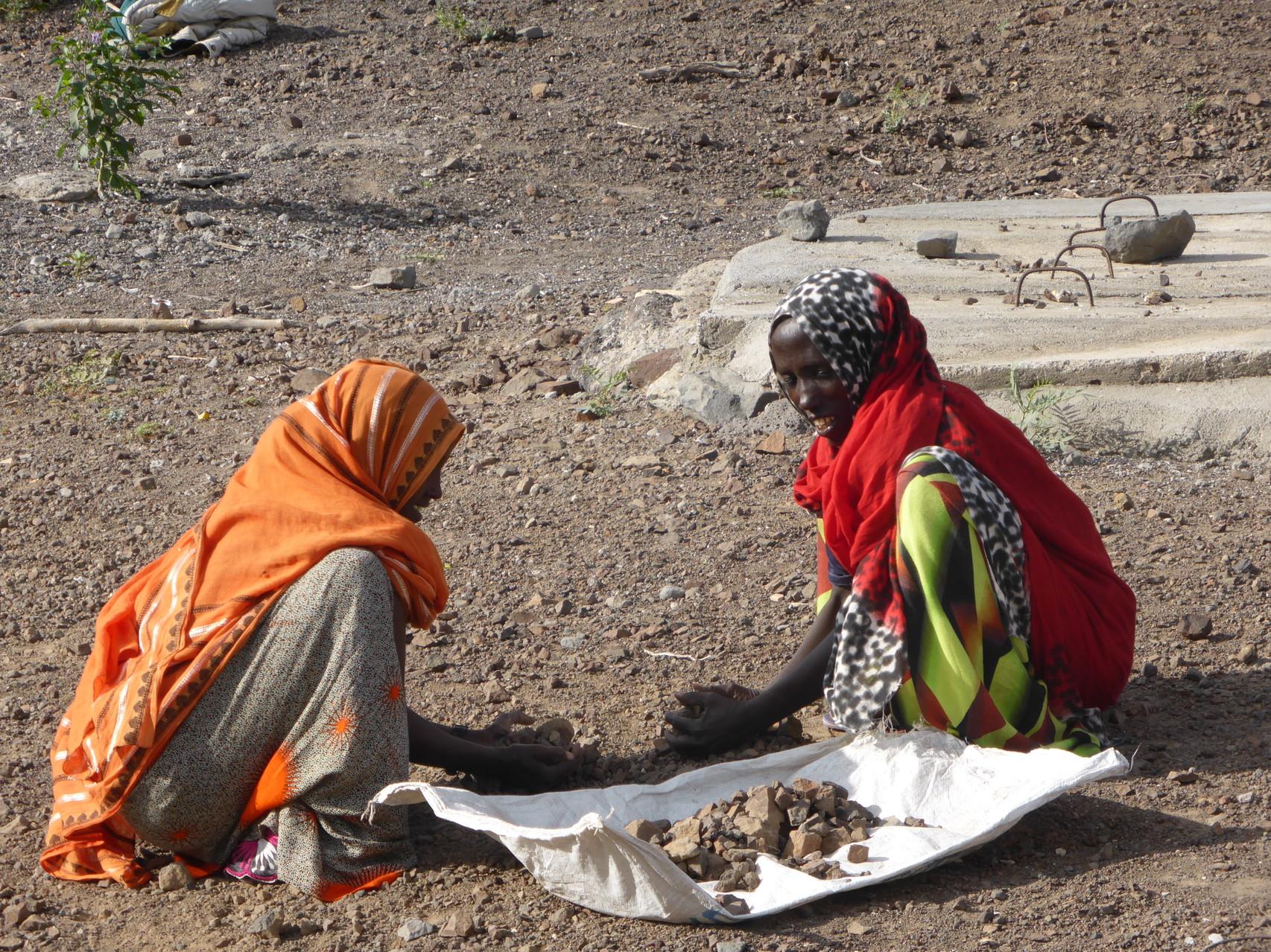 Ramassage de pierres pour la copnstruction de gabions : ouvrages destinés à retenir l'eau de pluie et à diminuer l'érosion