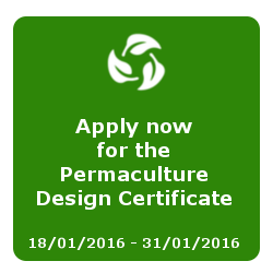 permaculture Design Certificate (PDC)