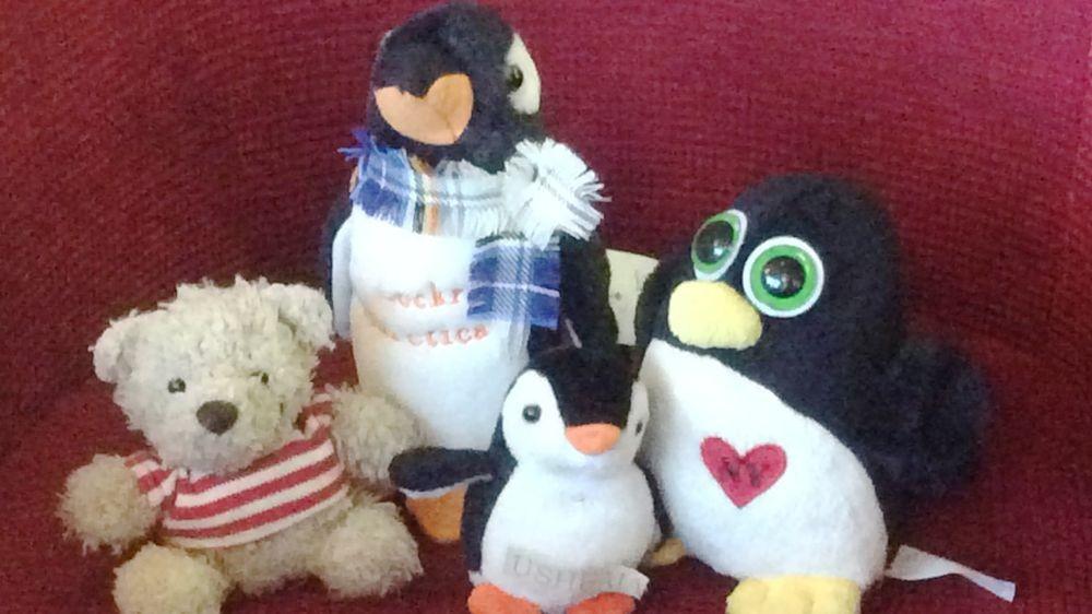 abends an der Bar! Der Pinguin von Igor und Alex macht Kunststücke!