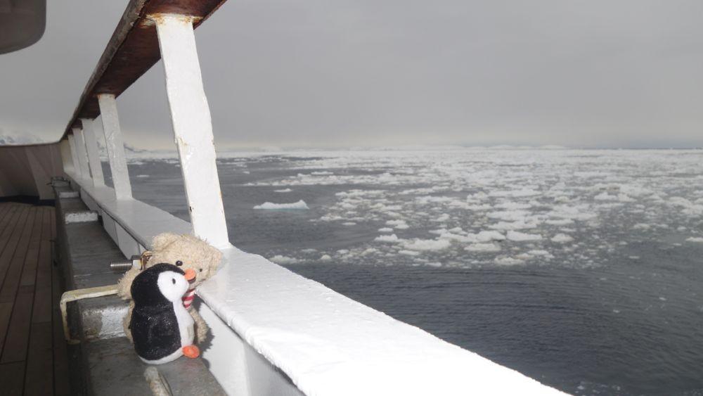 Wir fahren durchs Eis