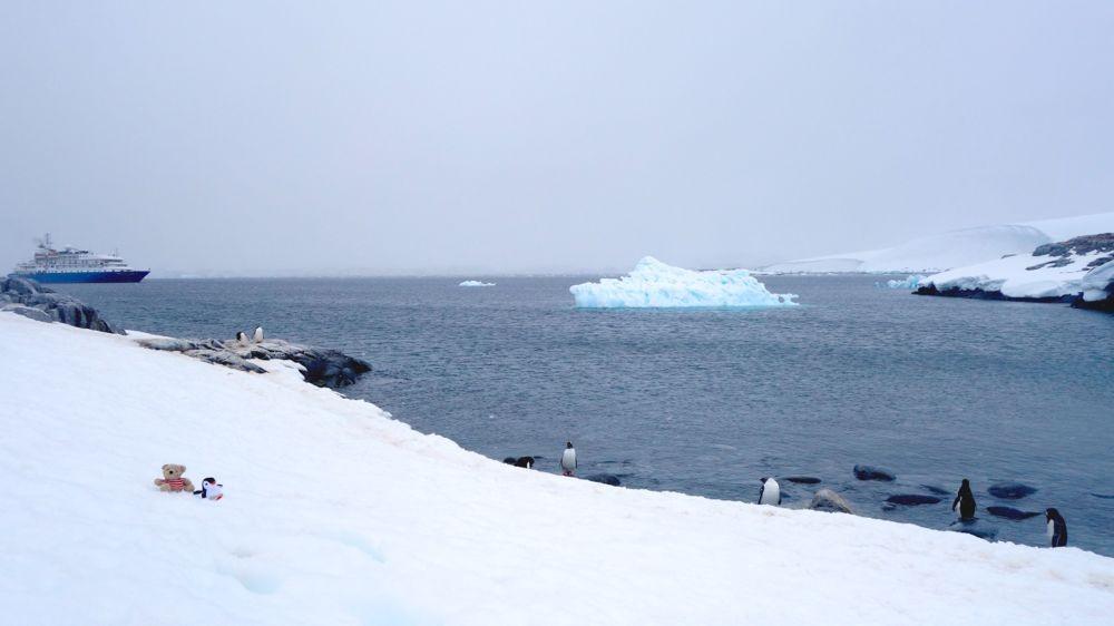 auf Port Lockroy bei unseren Pinguinfreunden