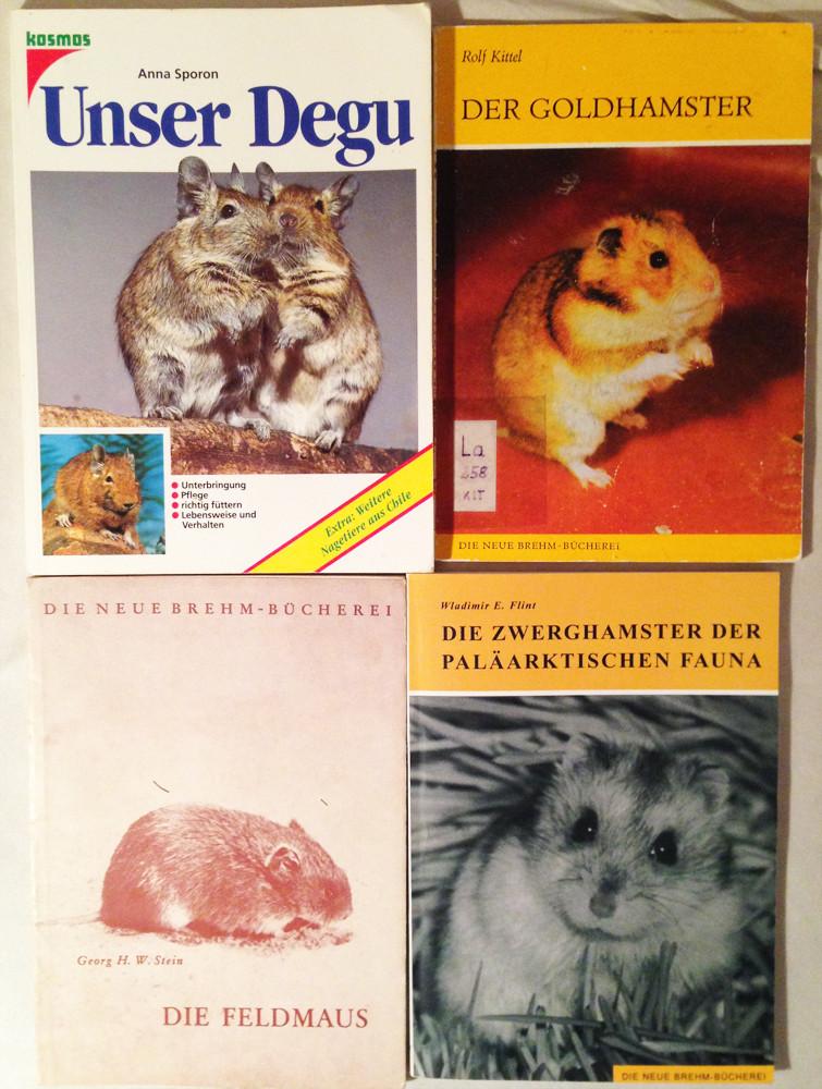 Auch alte Bücher stellen oft umfassende Wissensammlung dar
