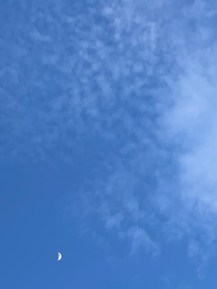 今日の夕方の空。左下の白いちっちゃな点は三日月🌙