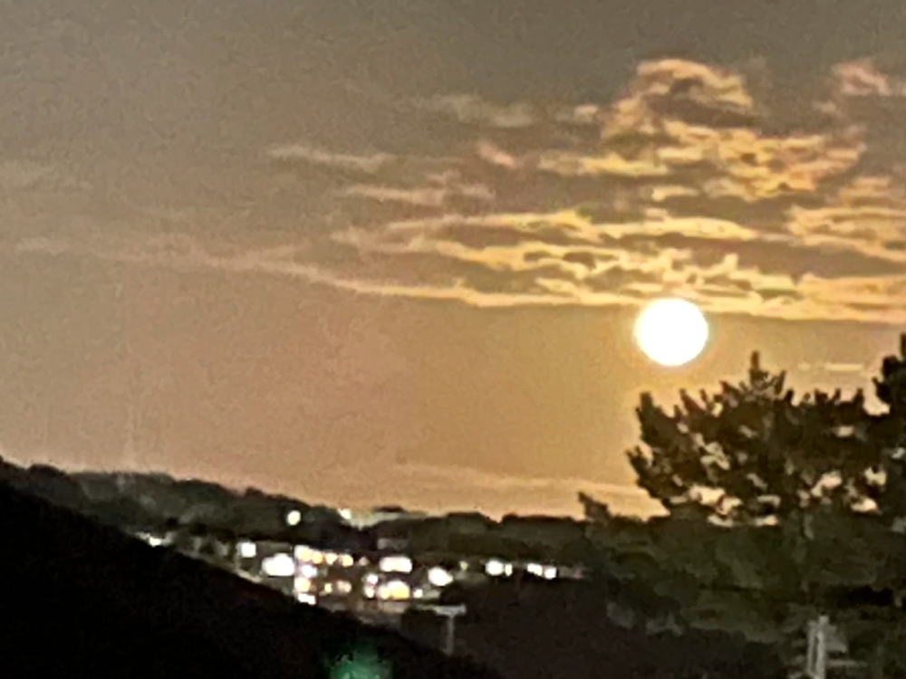 昨日の中秋の名月🌕