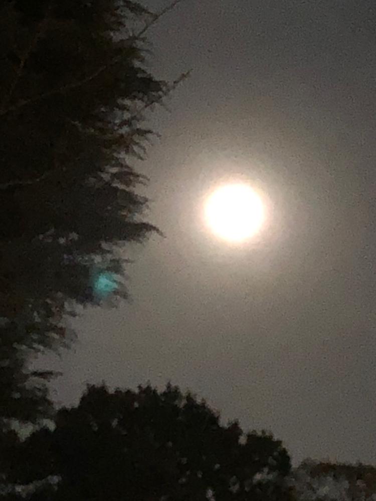 一昨日の月。見守ってくれています❤️