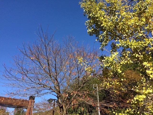 2013年秋の空