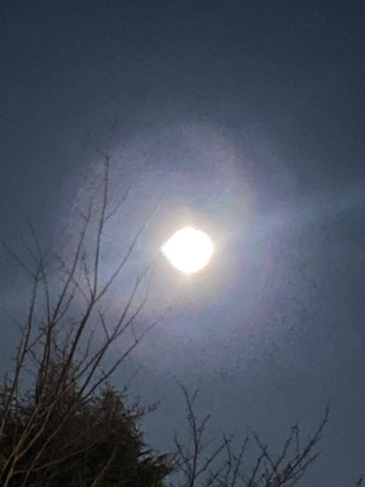 いつかの満月🌕何かが満ちるタイミング。