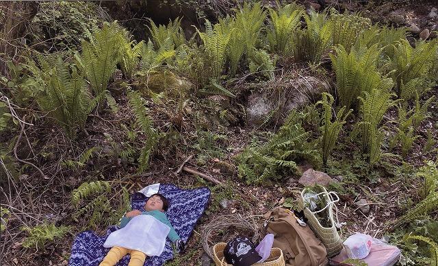特別賞 山で眠る孫 田村永司