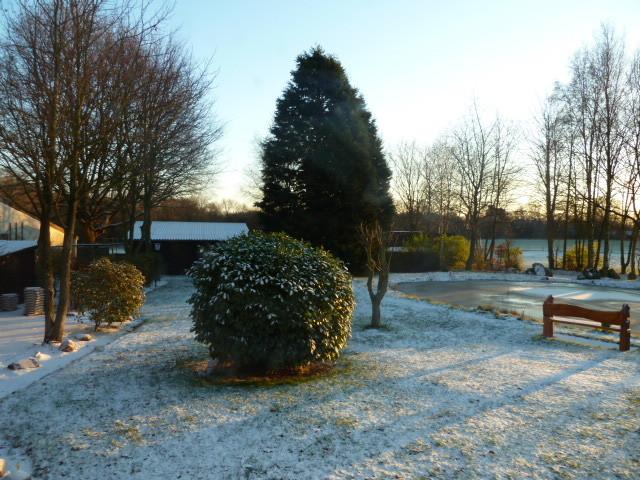 ...erster Schnee/ Frost.....