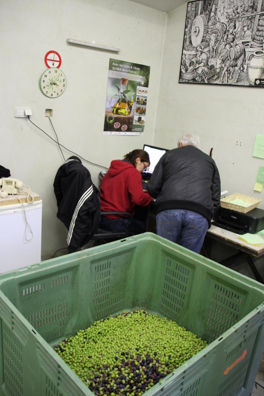 Bild: Ablieferung der Oliven durch Privatleute, Gordes