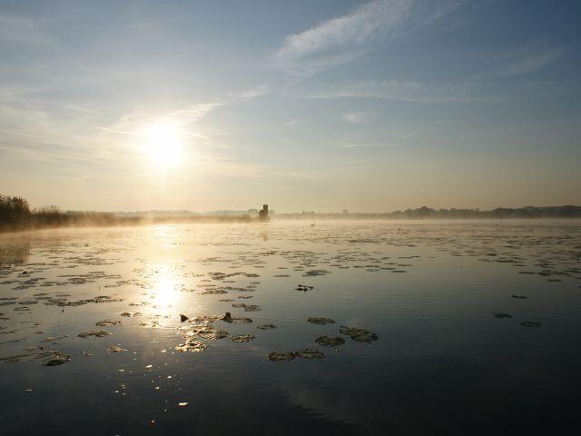 Morgenstimmung vor dem Nordufer (Bild: NABU/Jost Einstein)