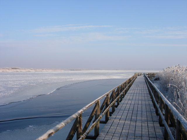 Winterspaziergang auf dem Steg (Bild: NABU/Jost Einstein)