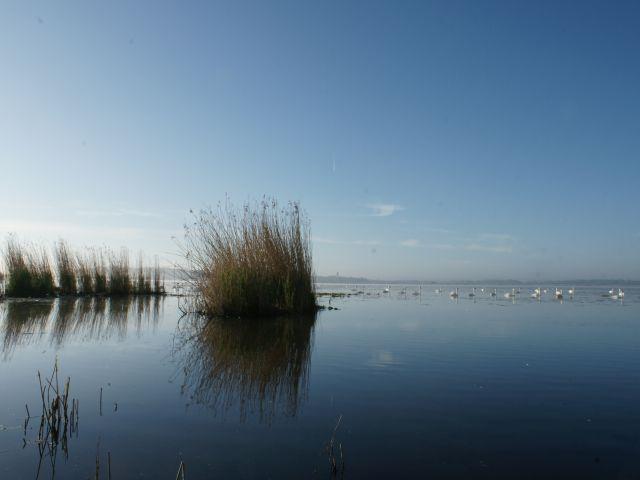 Stille (Bild: NABU/Jost Einstein)