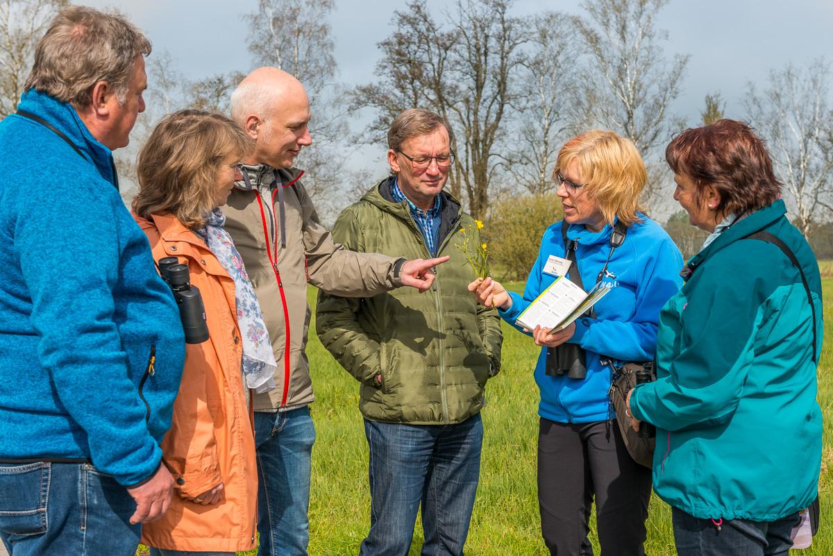 Führung zur Feuchtwiesenblüte (Bild: NABU)