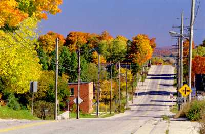 Take in the fall colours with a scenic drive through Grey County.