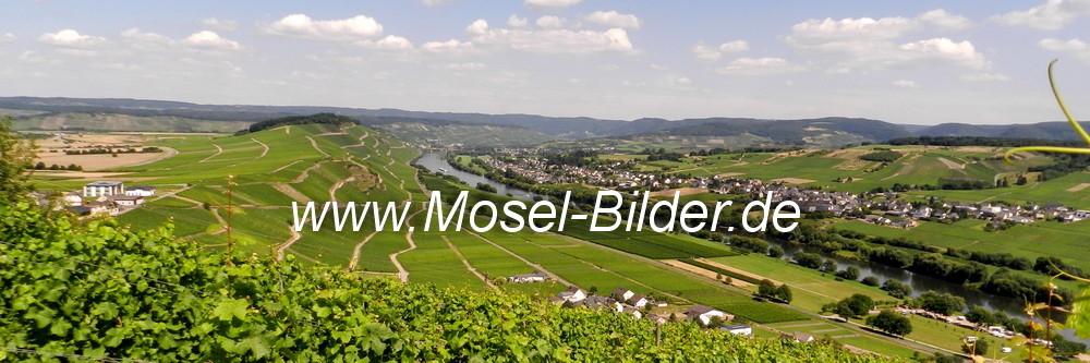 Blick auf das Moseltal bei Brauneberg
