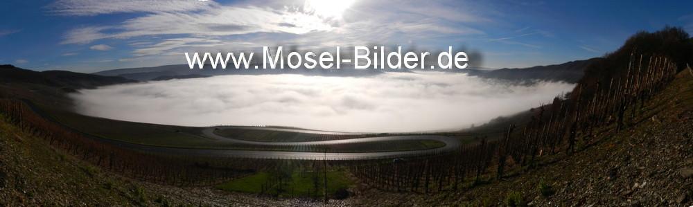 16.12.2013 Das Moseltal bei Piesport ist mit Nebel gefüllt