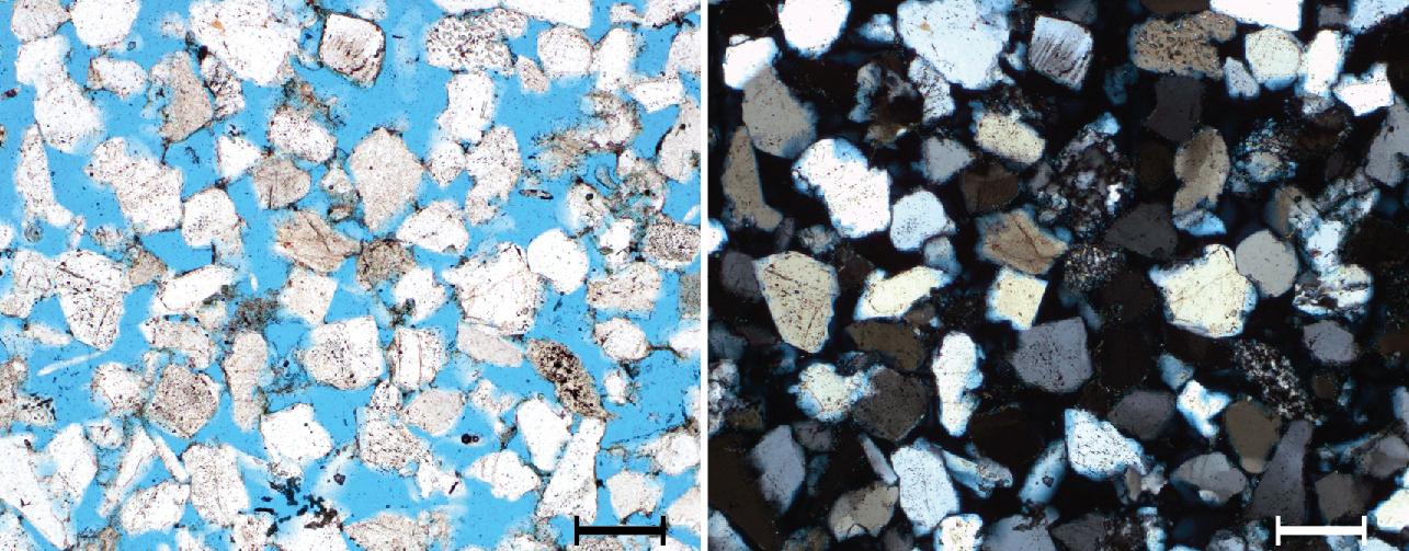Dünnschliff des Contorta-Sandsteins mit blau eingefärbtem Porenraum, links: Durchlicht, rechts: gekreuzte Polarisatoren, Maßstab entspricht 0,5 mm.