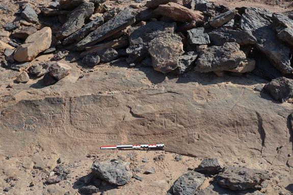 Ces gravures de 5,200 ans sont les plus vieilles trouvées à Wadi Ameyra dans le Désert de Sinaï et dépeignent un bateau avec un assortiment d'animaux. Credit: Courtesy Pierre Tallet