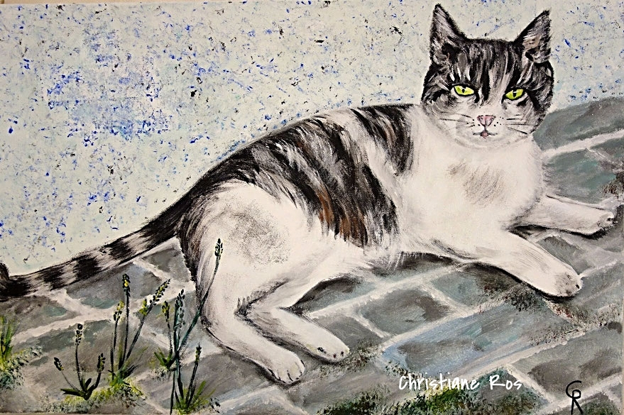 gemaltes Bild Hauskatze © Christiane Ros