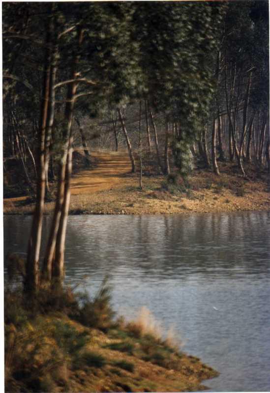 Lac d'Agès à Hagetmau