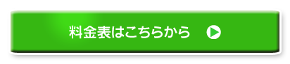 硫黄島3島周遊クルーズ:料金表