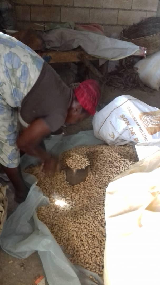 Fabrication des kits de semences