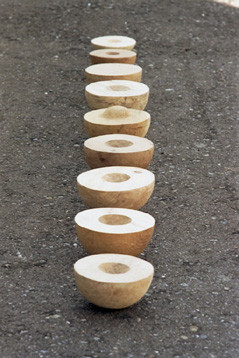 """Solarsysteme"" 9 pieces 9 different kinds of wood 2000-2002, D 20-25cm"