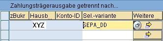 SEPA SAP Zahlungsträgerfprmat www.hettwer-beratung.de