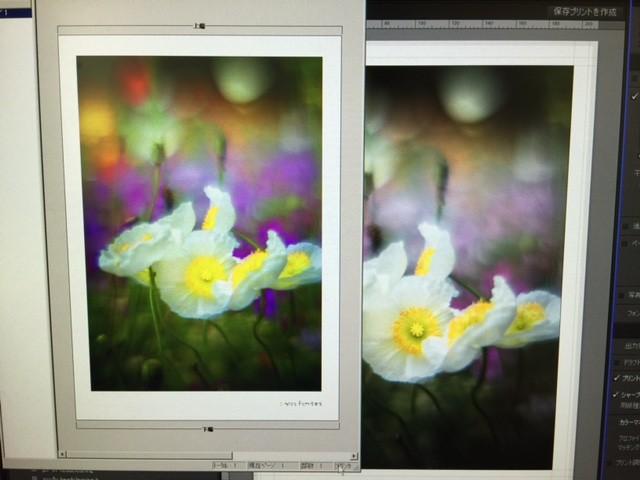 左が補正された画像のプレビュー、右が仕上げた画像データ
