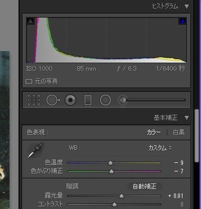 露出を+0.8補正した画像