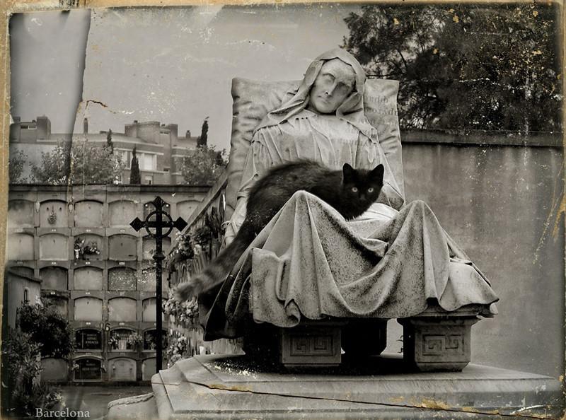 Барселона.Cementiri de l'Est