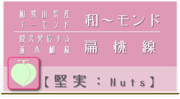 戦略N:堅実【nuts】アイコン NPO戦略 和×夢 nagomu farm