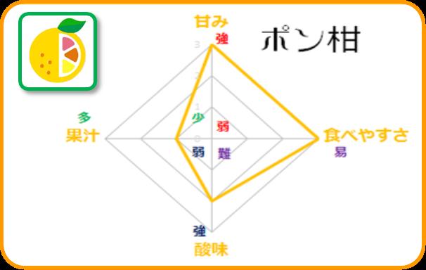 晩柑マトリクス【ポン柑】