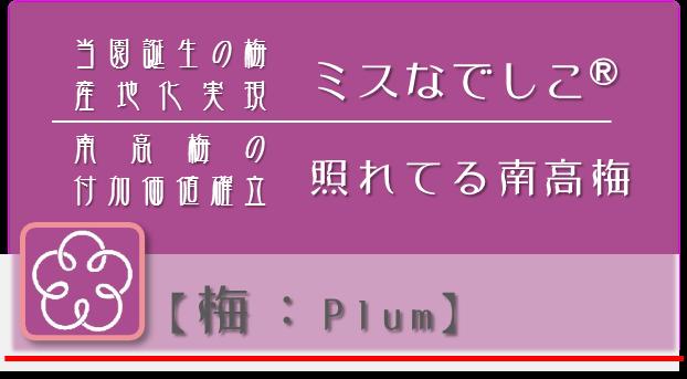戦略P:梅【plum】 npo戦略 和×夢 nagomu farm