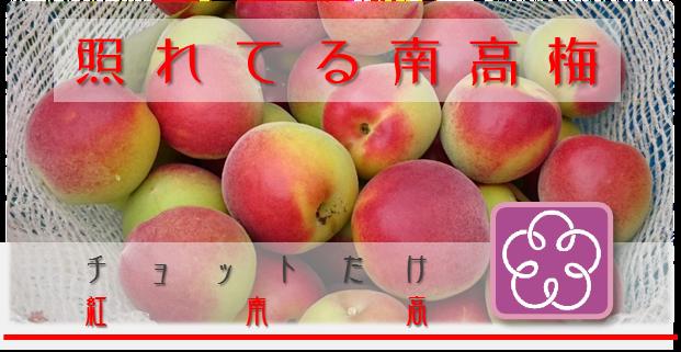 照れてる南高梅【紅南高】 アイコン 和×夢 nagomu farm