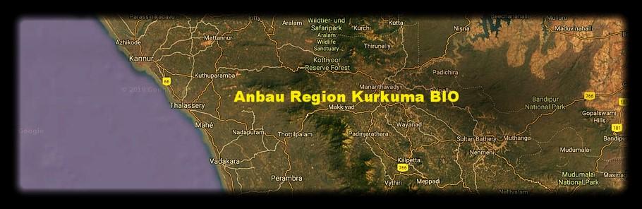 Kurkuma Anbaugebiet Südindien Zimmerli Adaptogene