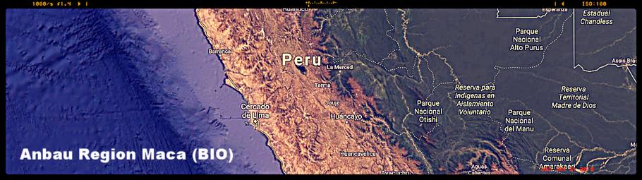 Frisch geerntet in den Bergen Peru's